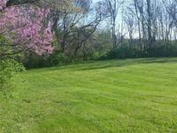 Double lot at corner of Solod and Doyal, across from