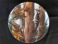 "This is a beautiful plate called ""The Downy Woodpecker"""