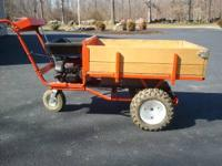 Dr. Power Wagon. Great Shape. 6.75 hp Briggs & Stratton