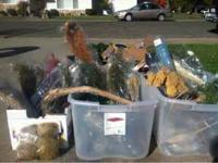 Assorted dried flowers. Around 30 bunches. $10.00 for