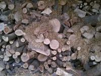 I have seasoned firewood, stored