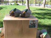 Marard Duck Standard Size, new in boxes. $25.00 a