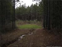 This 166 acre property is a mixed use recreational,