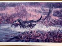 Immaculate condition Ducks Unlimited print numbered 8