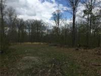 28.70+/- nice wooded level tract. Several building