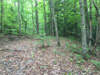 5.04+/-acre lot in Stone Creek Cabins Subdivision on