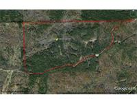242+/- acres fronting on Stroud Road west of Durant,