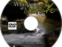 Whispers of Nature Relaxing Video Scenes Witness the