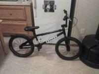 I have a Eastern Bmx Bike. Im not sure of what model it