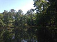 186.74 Acres with seven creeks, two leading to a Pond.