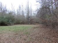 Priced To Move! Deer Hunters dream come true! This