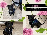 My story Eboney and her ears would love to become part
