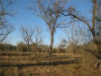 This is a stunning pecan orchard with frontage along