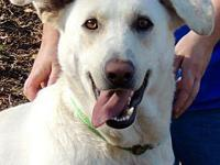 Eden's story Eden is a big lovable girl! She would love