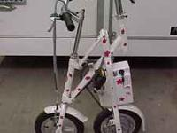 ##### Folding Umbrella Bike ##### 24 Volt Pedal assist