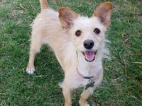 Elli Lu is a happy and energetic 1 year old girl.  She
