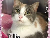Ellie was brought to us along with Evie and Emmanuelle.