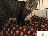 Ellie's story Meet Ellie! Ellie is 8 years old and is