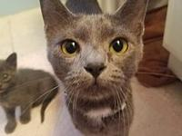 Eloise's story Hi I'm Eloise! I was found outside with