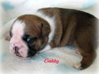 ON HOLD...This is gorgeous Gabby! We are pleased to