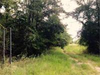 This 40-acre Ouachita-Boeuf WMA Tract is a perfect