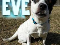 Eve was dumped in someone's backyard on New Years Eve,