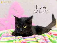 EVE's story Hello! My name is Eve and I am a beautiful