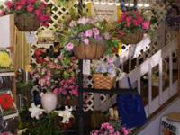 Want a flowering hanging basket that you don't have to