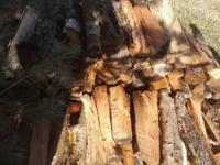 I HAVE GOT SOME AWESOME BURNING HICKORY FIREWOOD! I