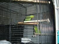 one pair of green parrotlets with cage and nest , one