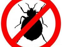 DABA EXTERMINATING LLC  INSPECCION Y ESTIMADOS GRATIS