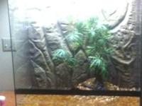 Extra large exo terra terrarium, practically new. It