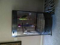 Very nice cage, has full plexiglass door on front. Two