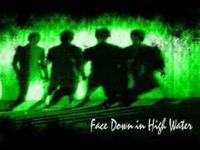 Face Down in High Water's studio album in is a hard