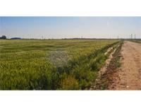 Outstanding Major Co. Farms 80+/- & 160+/- Acres of