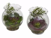 Type:GardenA range of artificial plants for home and