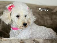 Fancy's story Please contact Constance