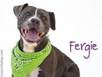 Fergie's story *** COURTESY LISTING *** PLEASE CALL OR