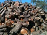 Seasoned almond firewood, we have both split and