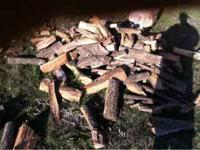 Delivered and stacked!! Different kinds of wood!!!