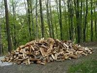 Lots of firewood, all hardwoods , no pine (unless you