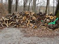 Split Firewood for sale, Ash, Cottonwood, Elm & others,