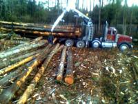 FOR SALE FULL LOG LOADS. Hauling logs to you. Big