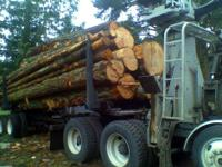 Selling firewood, beautiful mixed, douglas fir, some