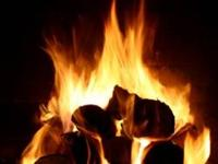 If you need Quality Fire Wood Pronto, please email or
