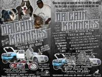 Da Cain Kennels is having their first Bully and Car