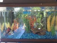Really nice 27 gallon fresh water fish tank with black