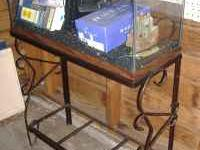 30 Gallon Fish tank with everything. Filter, heater,
