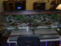 Fisk tank that is 55 gallon. Comes with five air pumps,