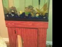 20 gallon fish tank does not leak, has water in now.
